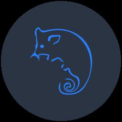 Possum Removal Wynnum