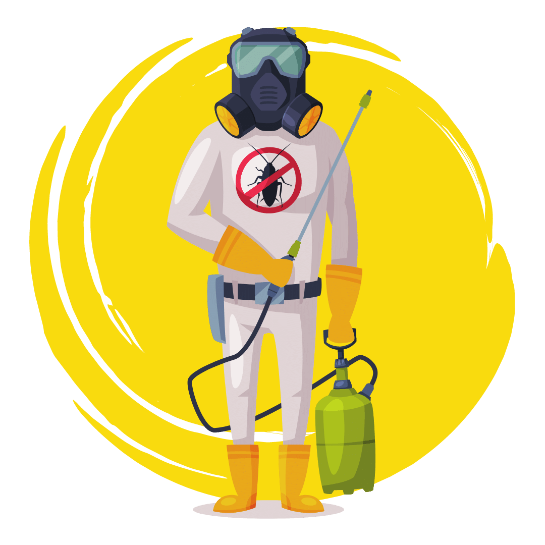 Residential Pest Control In Wynnum